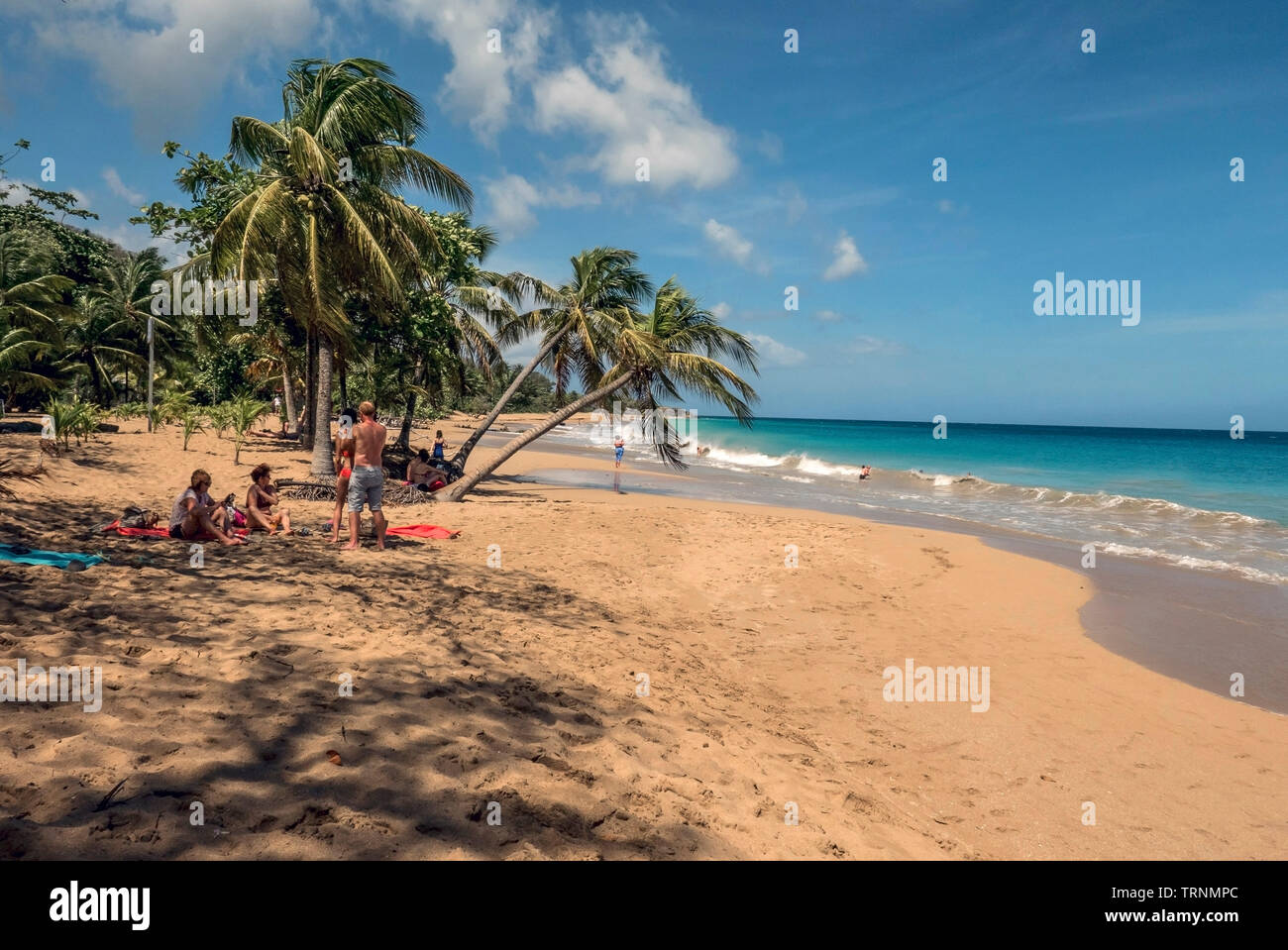 La Perle beach at Basse -Terre on the french island of Guadeloupe in the Antilles Stock Photo