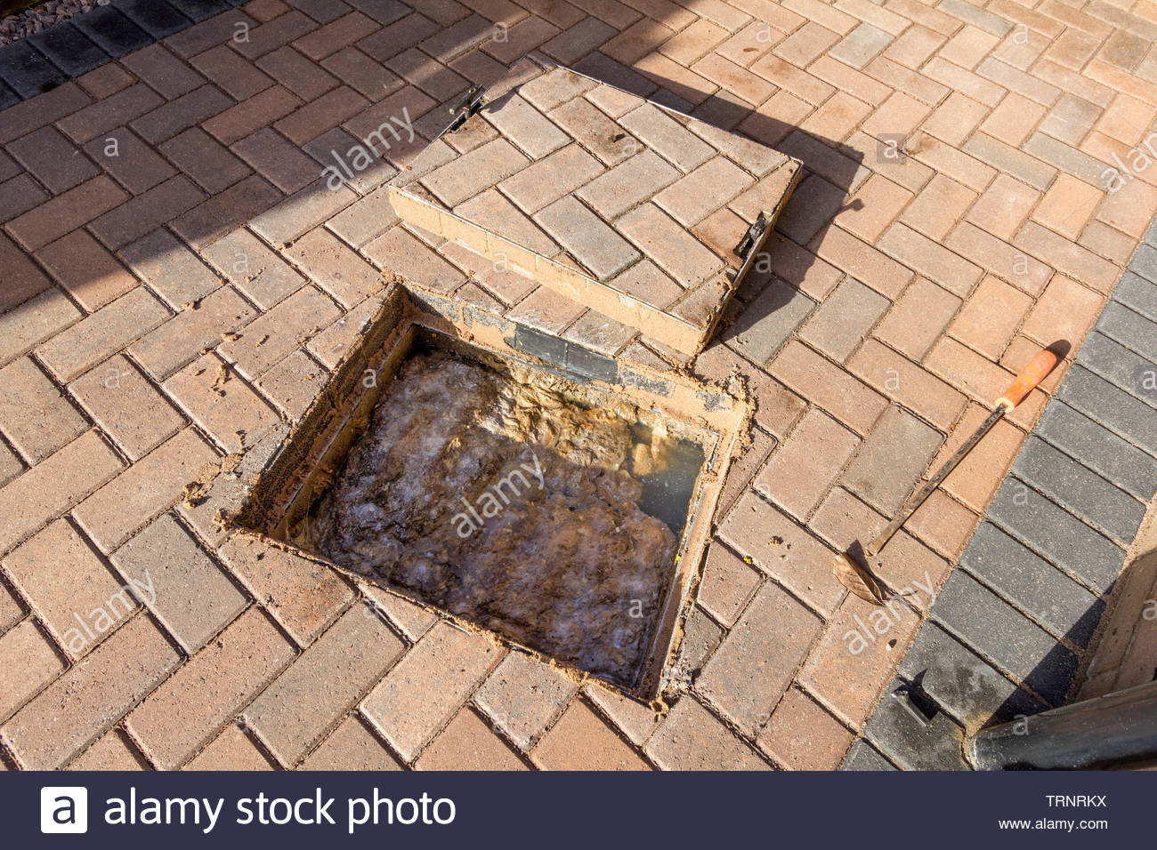 Blocked Drain - Drain cover removed to reveal backed up sewage - Stock Image
