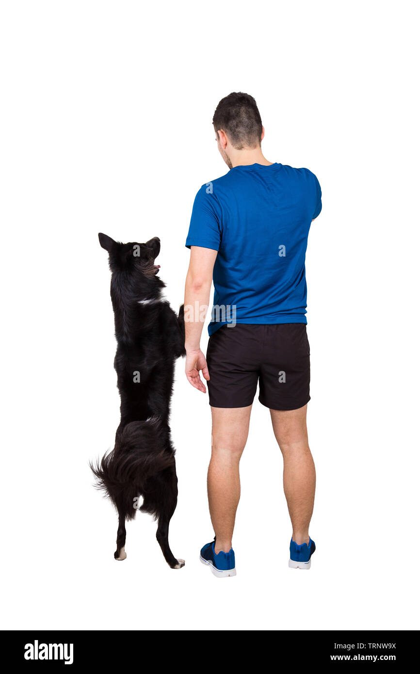Rear view full length of young man owner training his obedient border collie dog standing on hind paws isolated over white background. Human and pet f - Stock Image