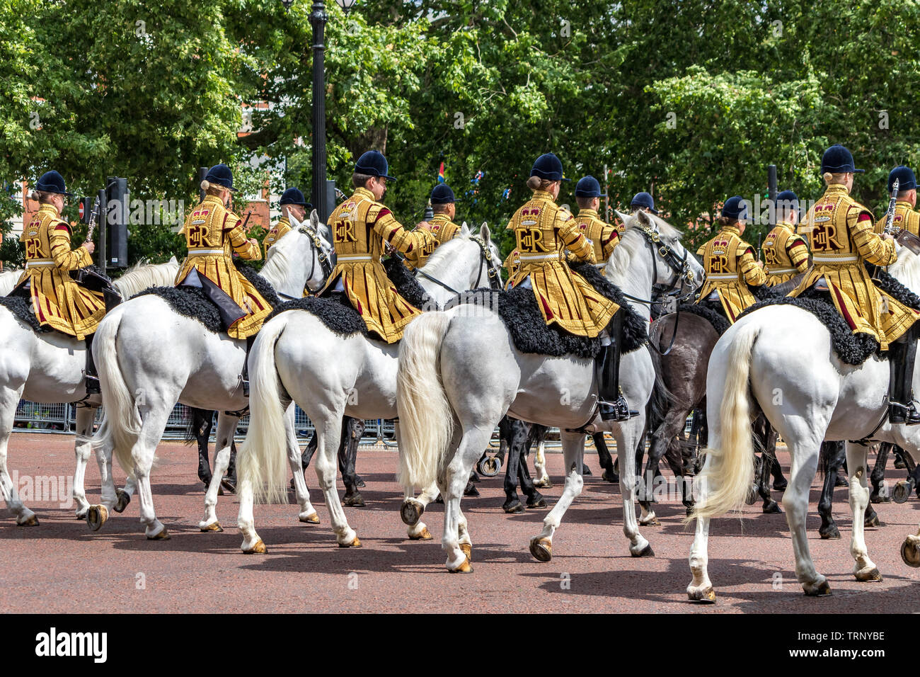 The White horses of the Mounted Band of The Household Cavalry on The Mall at The Trooping Of The Colour Ceremony ,London 2019 - Stock Image