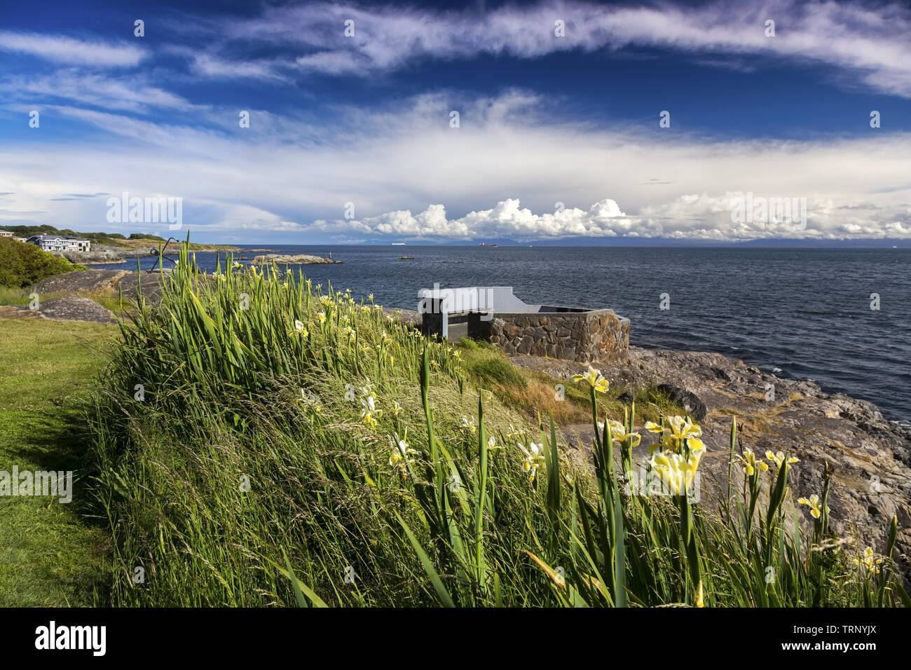 Sweeping Landscape View of Juan De Fuca strait and Dramatic Sky over Distant Olympic Peninsula in Washington, USA from Saxe Point Park in Victoria BC Stock Photo
