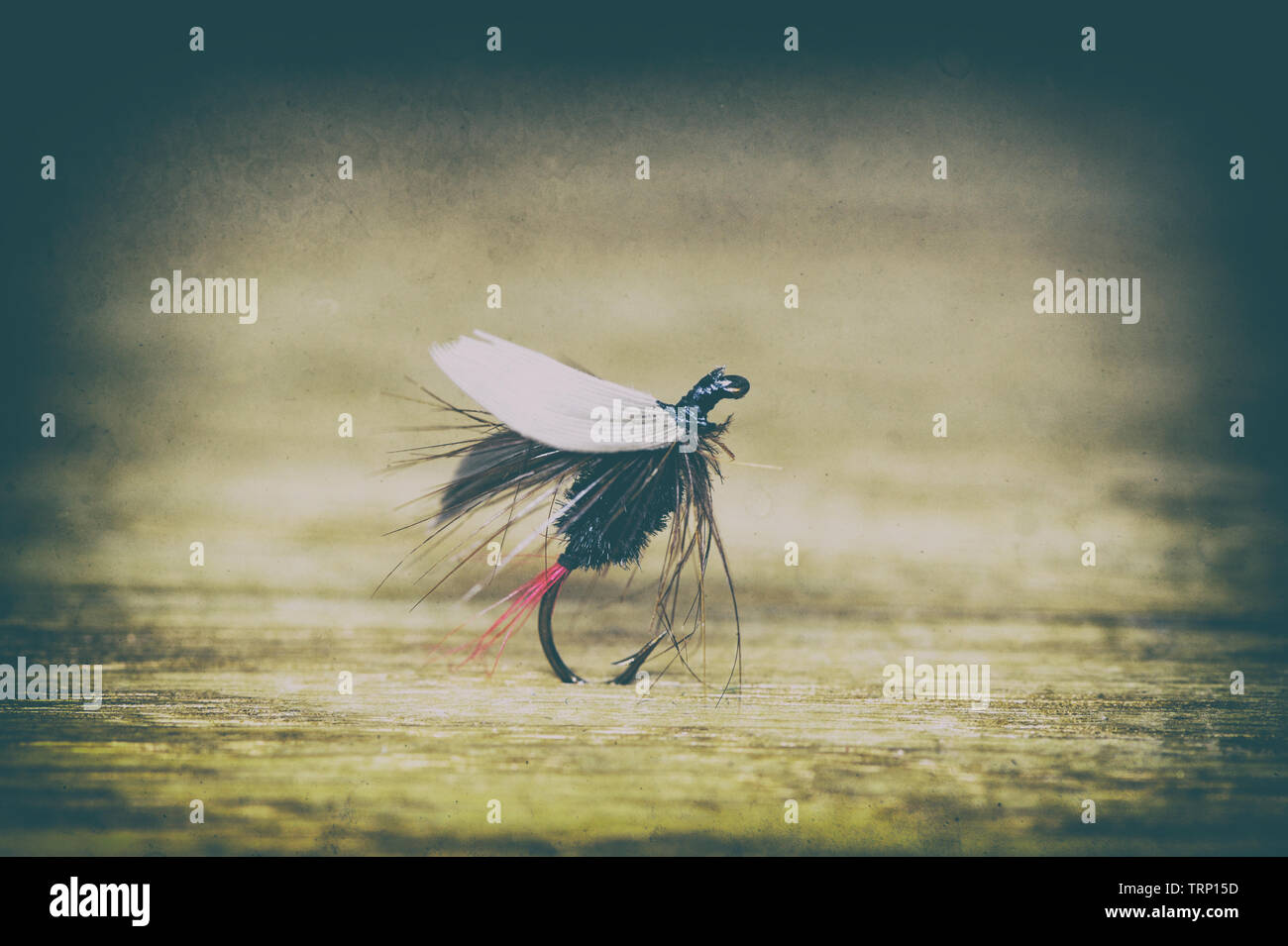 Fly fishing lure close-up in retro style Stock Photo