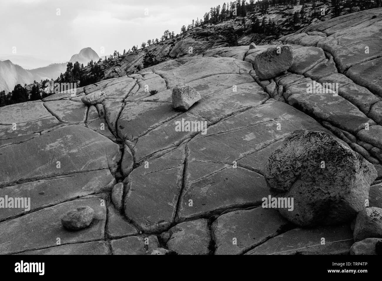 Tioga Pass Road,California, Lee Vining,Yosemite-Nationalpark,mountains,tree,pine, stones,valley,Landschaftsaufnahme,Schwarz/Weiss - Stock Image