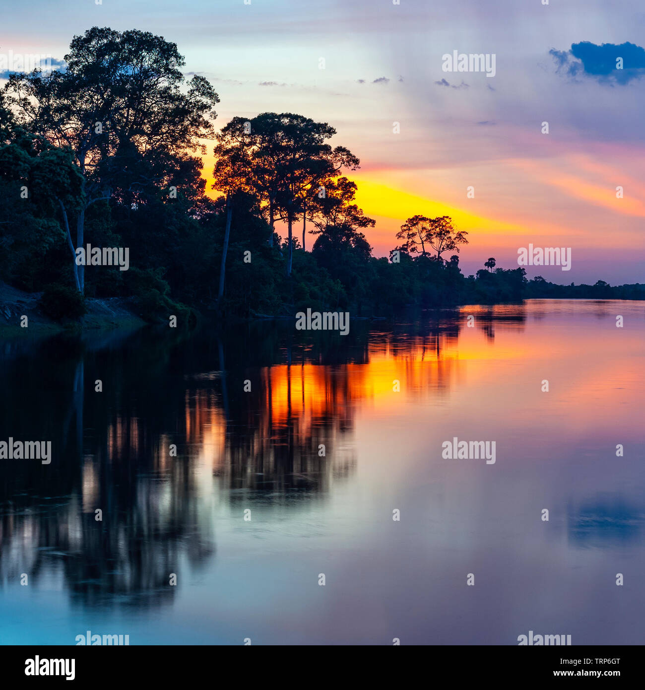 Sunset in the Amazon river basin which comprise the countries of Brazil, Bolivia, Colombia, Ecuador, (French) Guyana, Suriname, Peru and Venezuela. - Stock Image