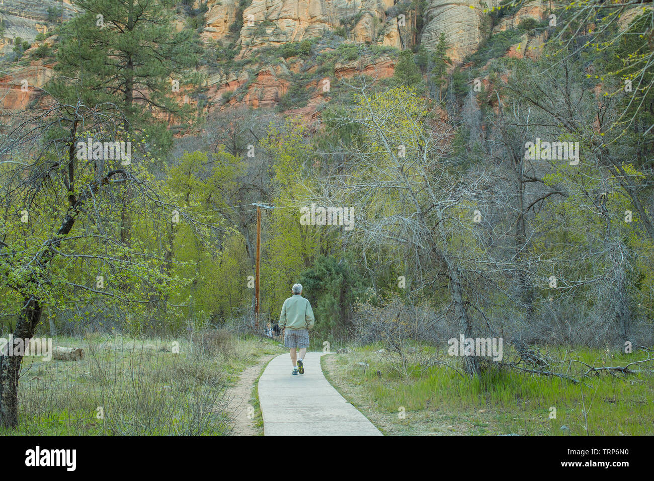 Located in North Sedona the trail encompasses 7.2 miles of trails, bridges, and water along Oak Creek up into the canyon. A photographers paradise. - Stock Image