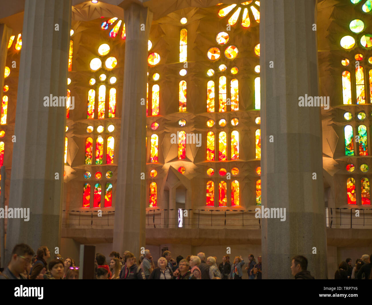 Barcelona, Spain. May 2019. The interior of La Sagrada Familia. Designed by Gaudi, the cathedral is being build since 19 March 1882 and is still under - Stock Image