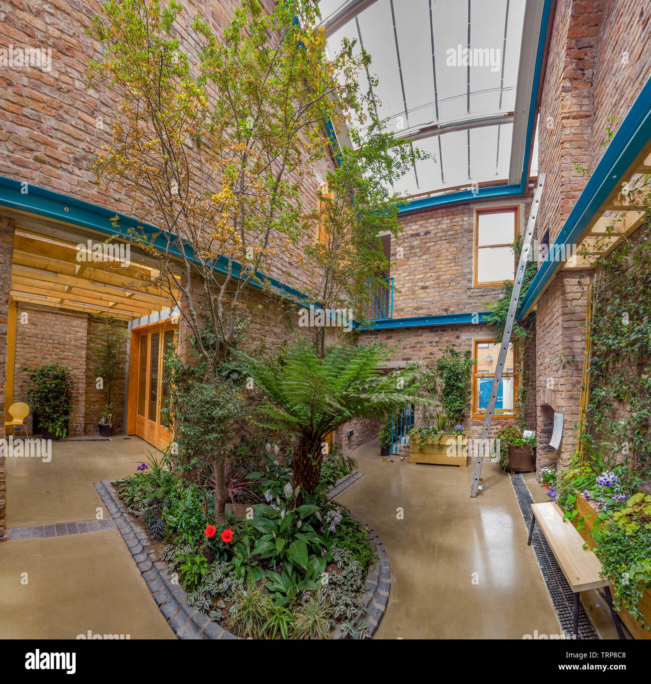 Cairns Street,Toxteth,Conservatory,House,Preservation,Liverpool,England - Stock Image