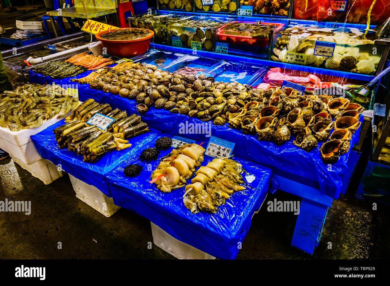 Seoul, South Korea - May 17, 2017:   Noryangjin Fish Market, the largest and oldest fish market in Korea, located in the Noryangjin-dong neighborhood. - Stock Image