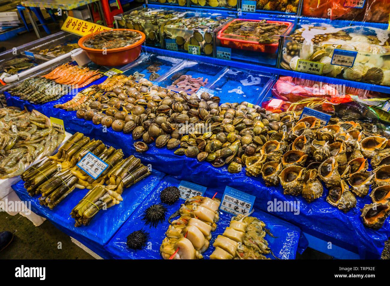 Seoul, South Korea - May 17, 2017:   Noryangjin Fish Market, the largest and oldest fish market in Korea, located in the Noryangjin-dong neighborhood. Stock Photo