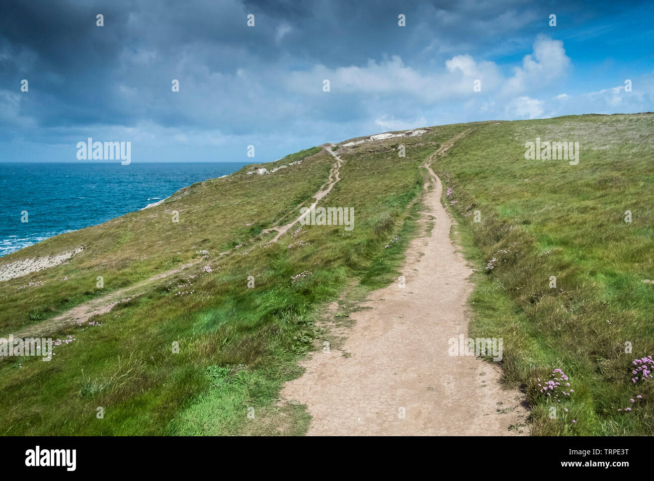 The South West Coast Path on the coast of Pentire Point West in Newquay in Cornwall. - Stock Image