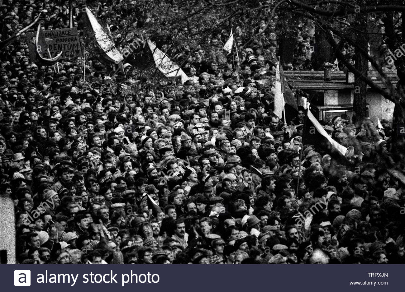 Czechoslovakia, Prague,1989 during the Velvet Revolution, the fall of communism in Eastern Europe. Celebrating the fall of the communist government by in Wenceslas Square . COPYRIGHT PHOTOGRAPH BY BRIAN HARRIS  © 07808-579804 Stock Photo