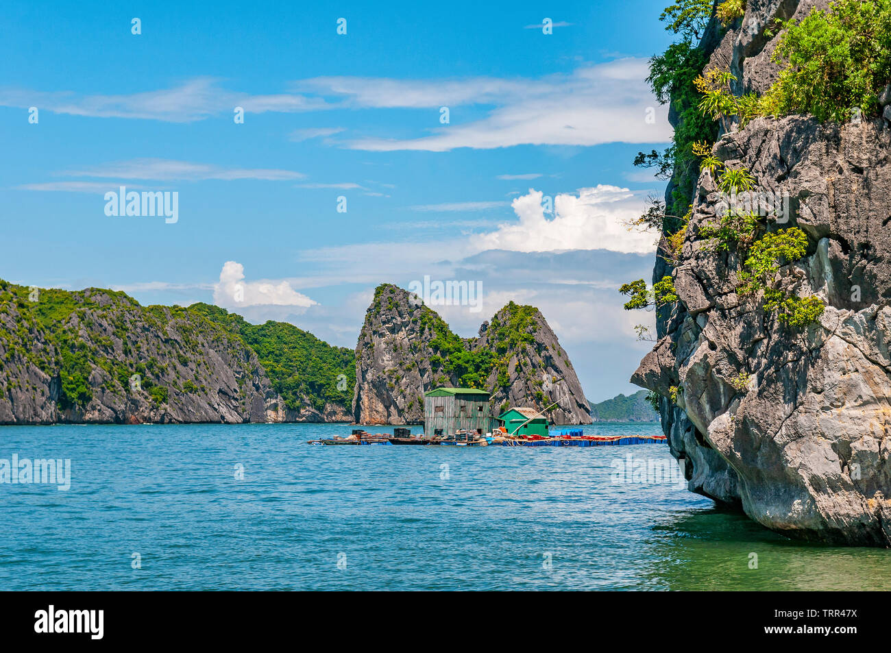A summer day between the karst mineral formations and emerald waters of the Tonkin Gulf in Halong Bay with a floating house, North Vietnam, Asia. - Stock Image