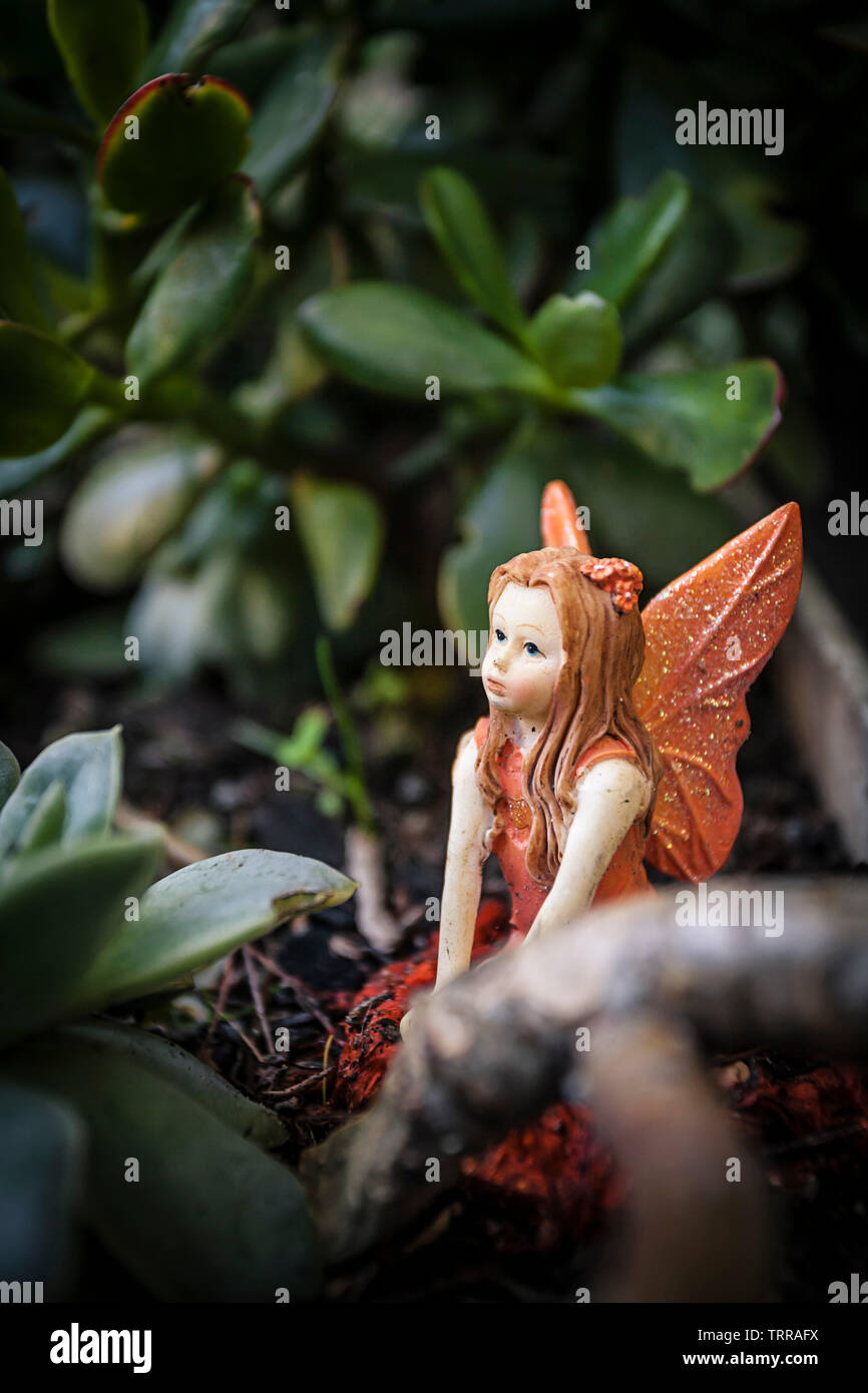 Fairy Garden High Resolution Stock Photography And Images Alamy