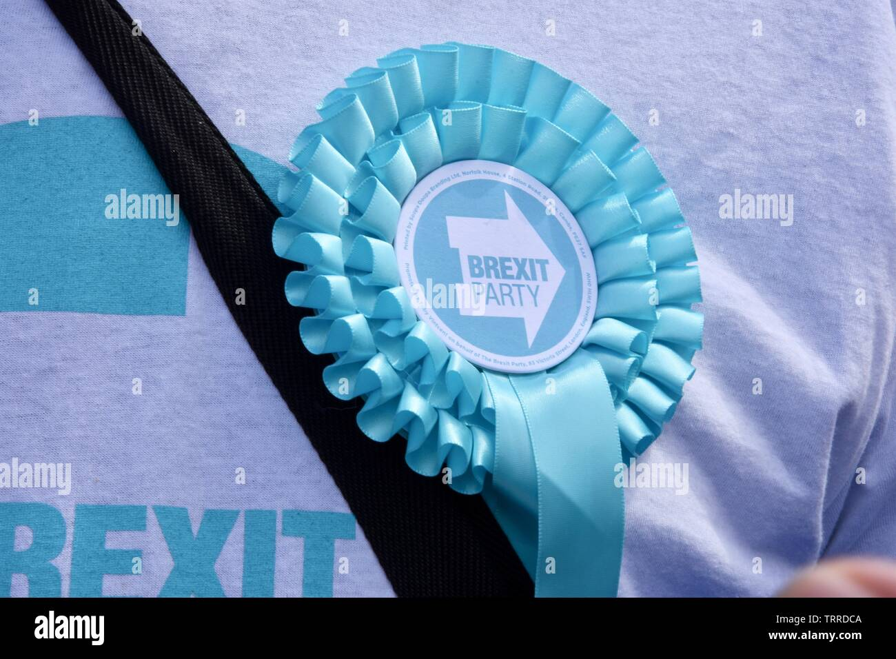 Brexit Party Rosette. Brexit Party, Westminster, London. Stock Photo