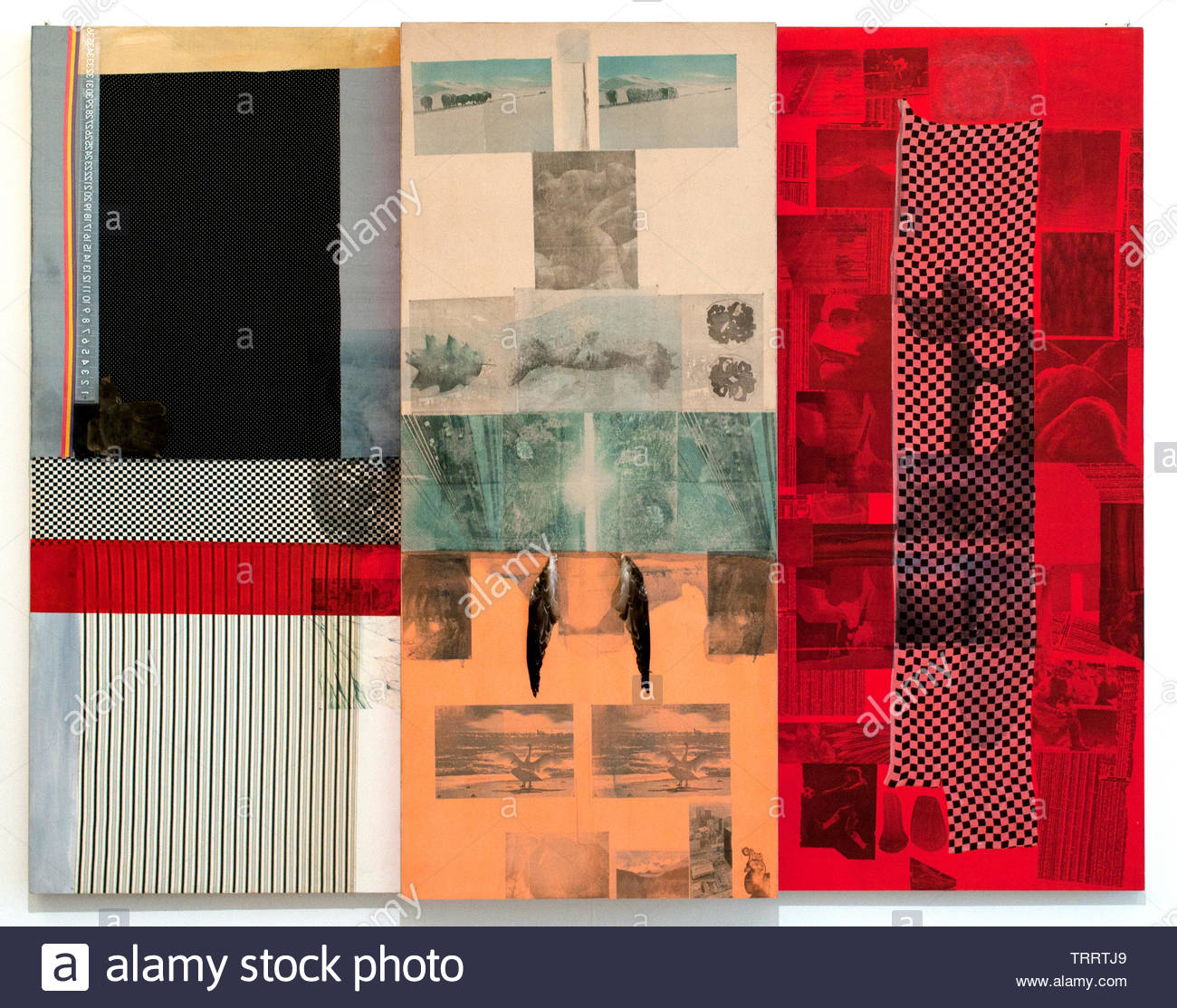 Ruby Goose by Robert Rauschenberg 1925 American, United States of America, USA, - Stock Image