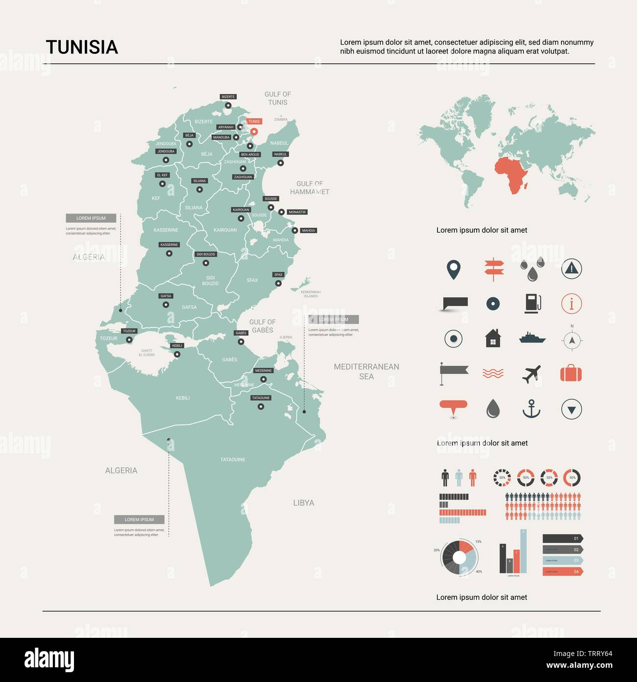 Image of: Vector Map Of Tunisia Country Map With Division Cities And Capital Tunis Political Map World Map Infographic Elements Stock Vector Image Art Alamy