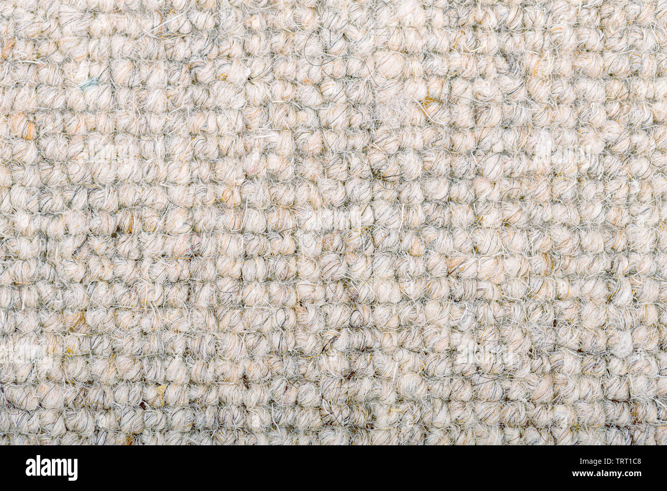 As close up of a loop pile wool carpet in neutral, cream and beige tones. - Stock Image