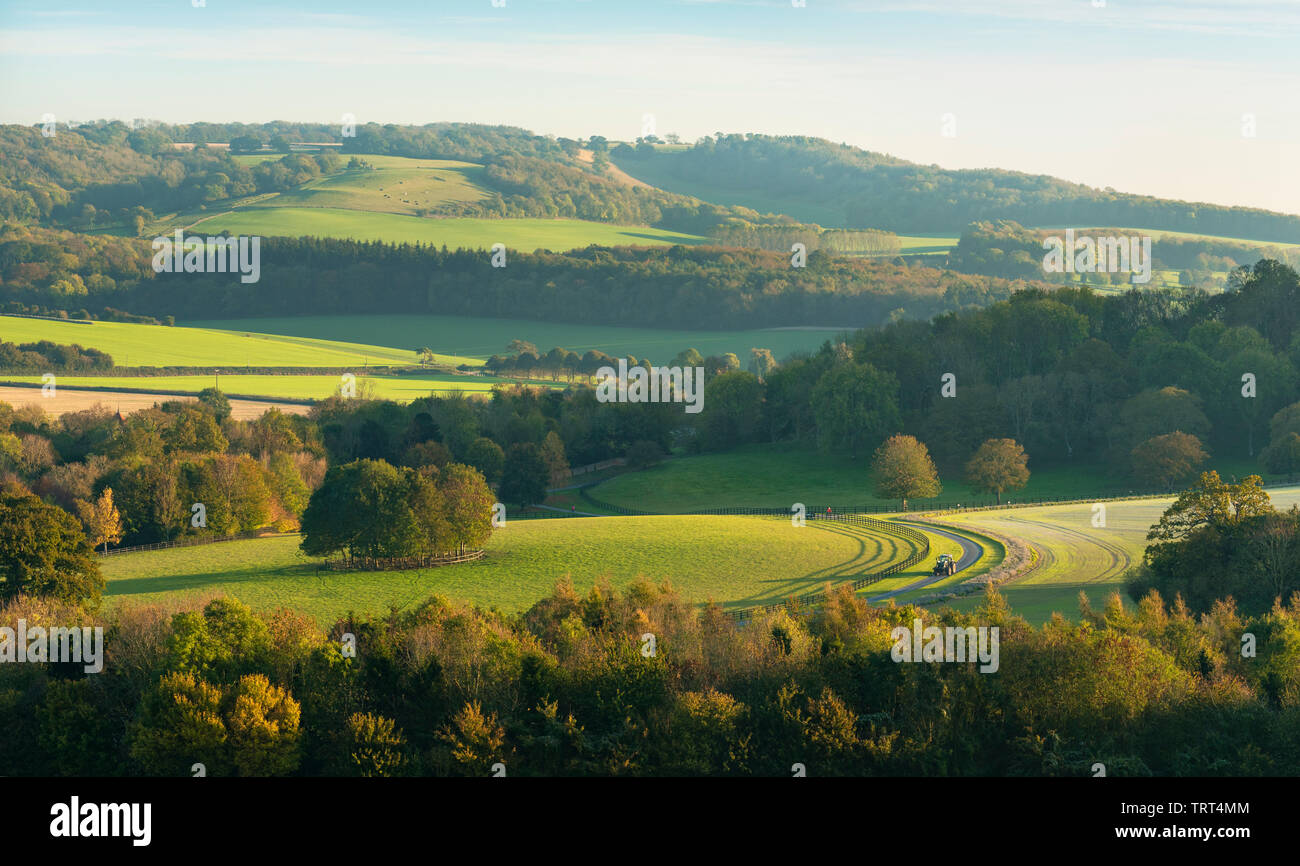 Late evening light in the Kent Downs AONB in the English countryside. - Stock Image