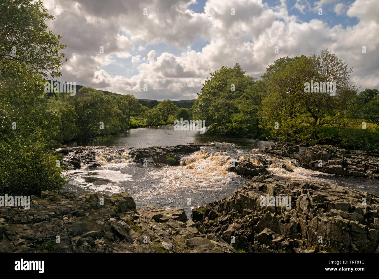 River Tees in Upper Teesdale just below High Force - Stock Image
