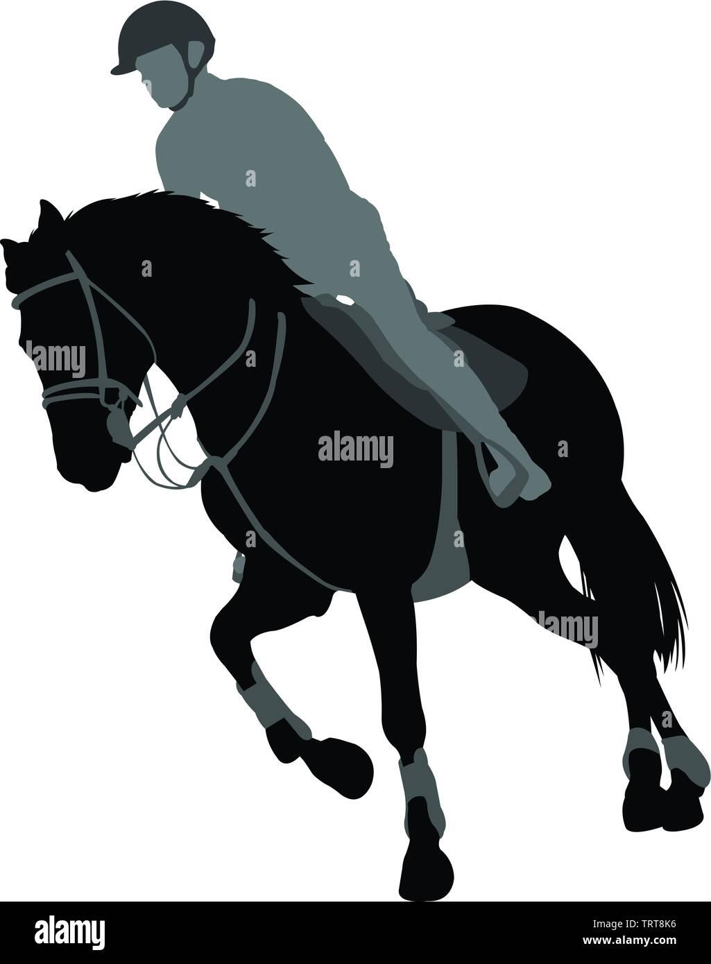 horse riding,equestrian sport silhouette - vector Stock Vector