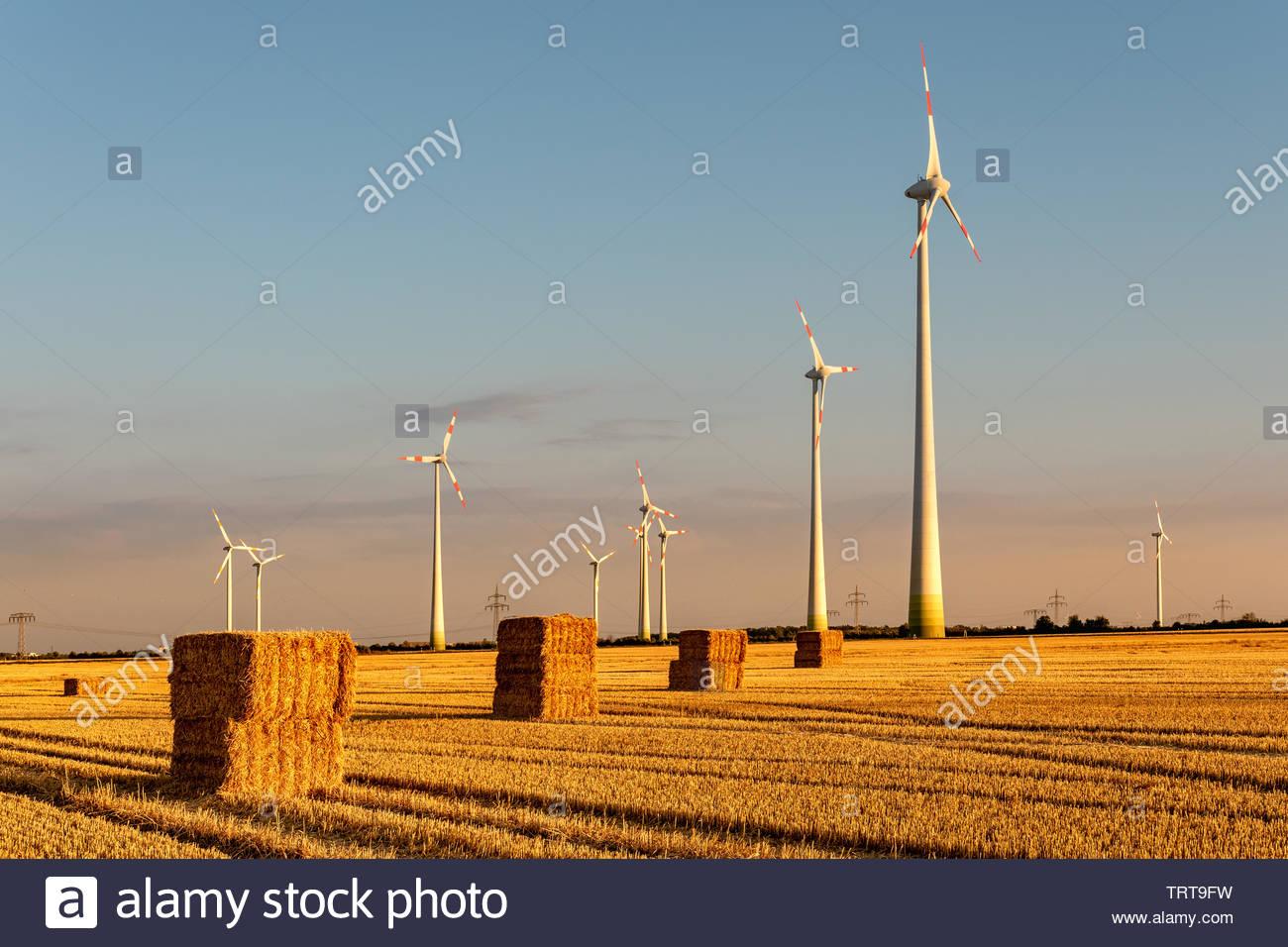 Strohballen und Ernergiegewinnung - Stock Image