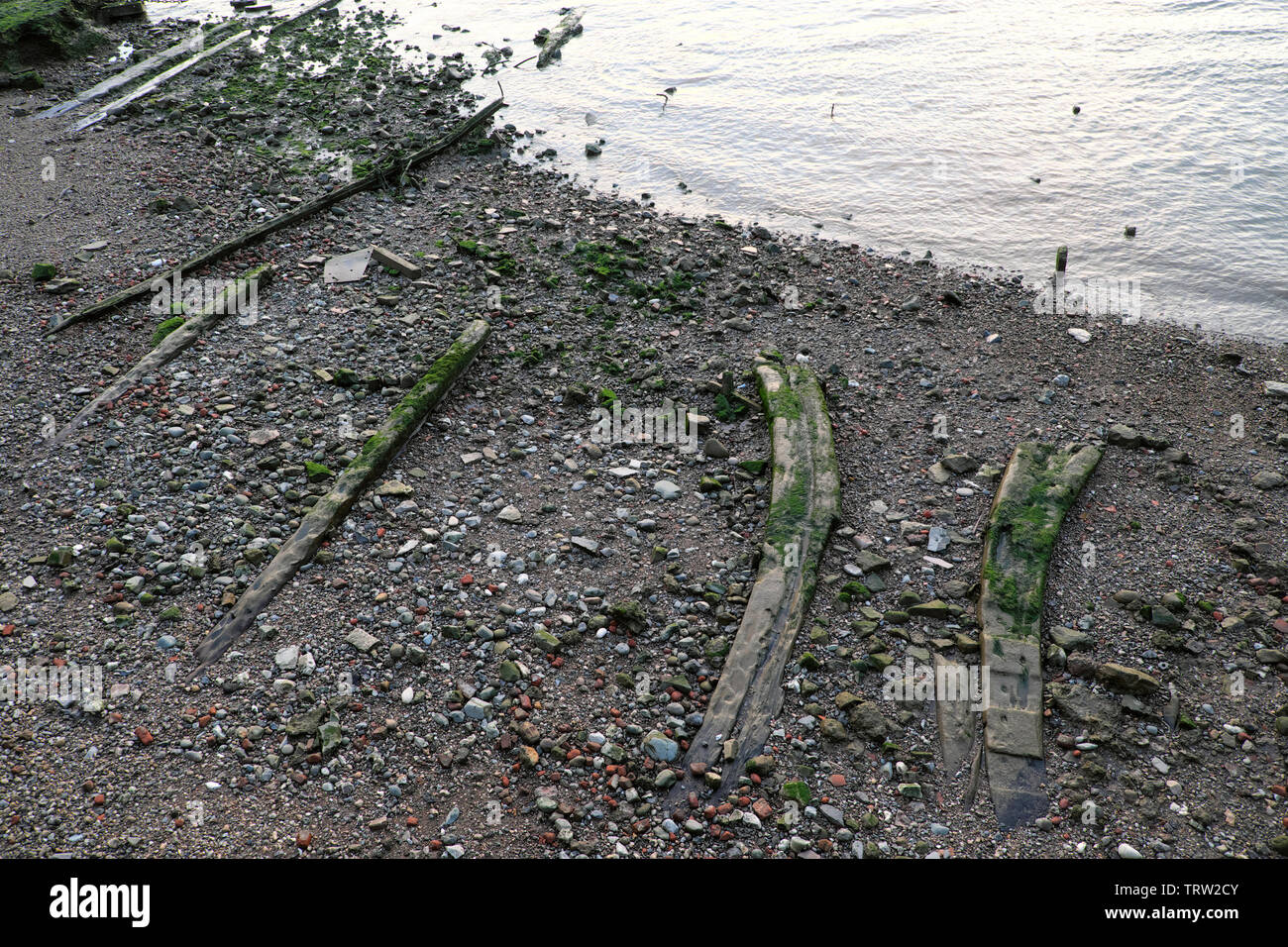 Historic ship timbers on the foreshore of the River Thames at low tide in Rotherhithe South London England UK  KATHY DEWITT Stock Photo