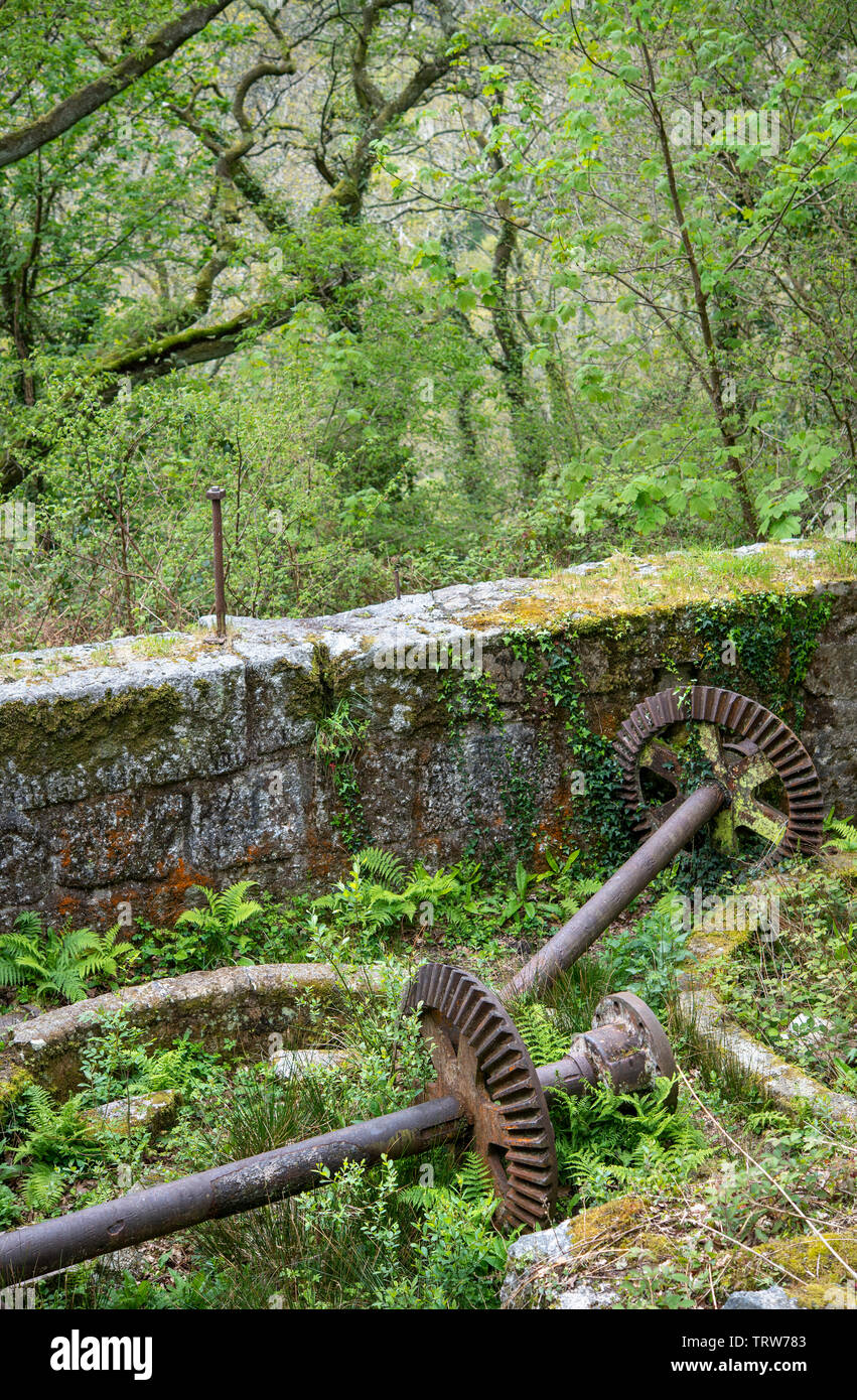 Old machinery and 19th century industrial remains in the Luxulyan Valley in Cornwall, England, UK Stock Photo