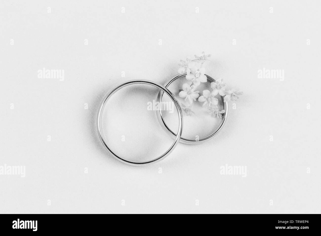 a pair of gold wedding rings and small white flowers in a ring on a white background, top view flat lay, black and white photo - Stock Image