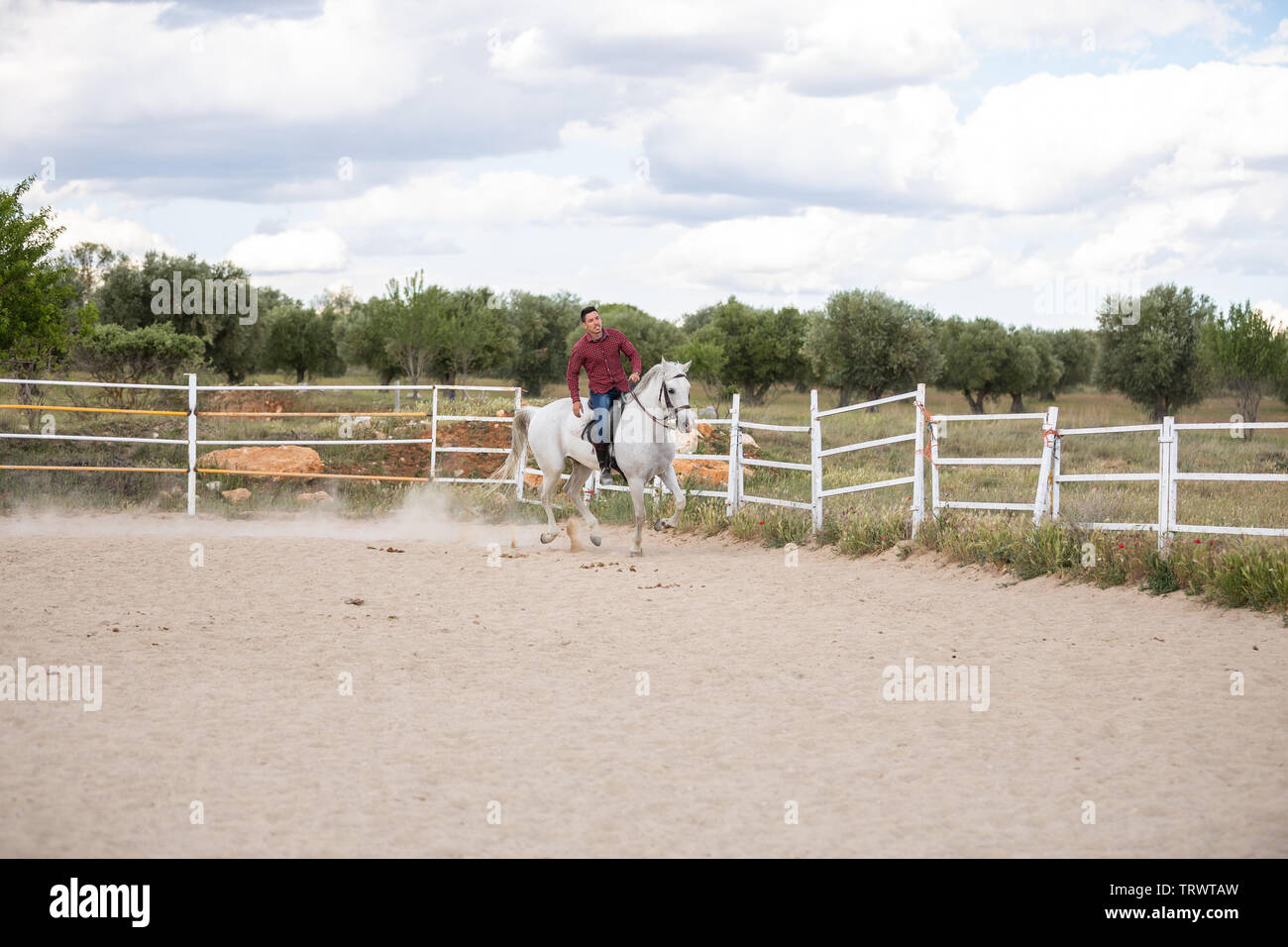 Young Guy In Casual Outfit Riding White Horse On Sandy Ground In Enclosure On Ranch Stock Photo Alamy