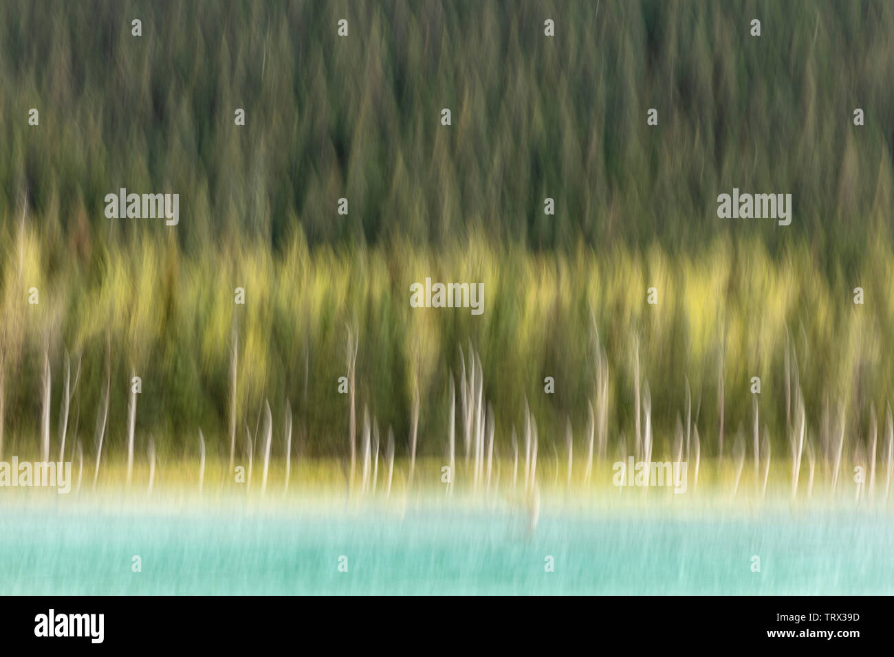 In-camera motion blur of Explorer Pond in the Chugach National Forest in Southcentral Alaska. - Stock Image