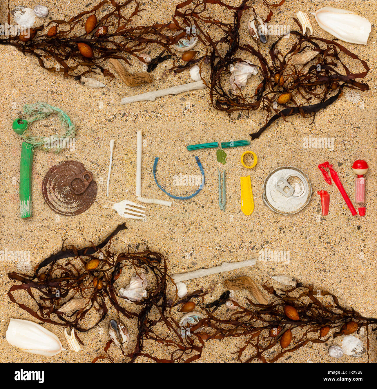 Pollution text made from real single use plastic rubbish found on beach with shells, seaweed and natural beach debris - Stock Image