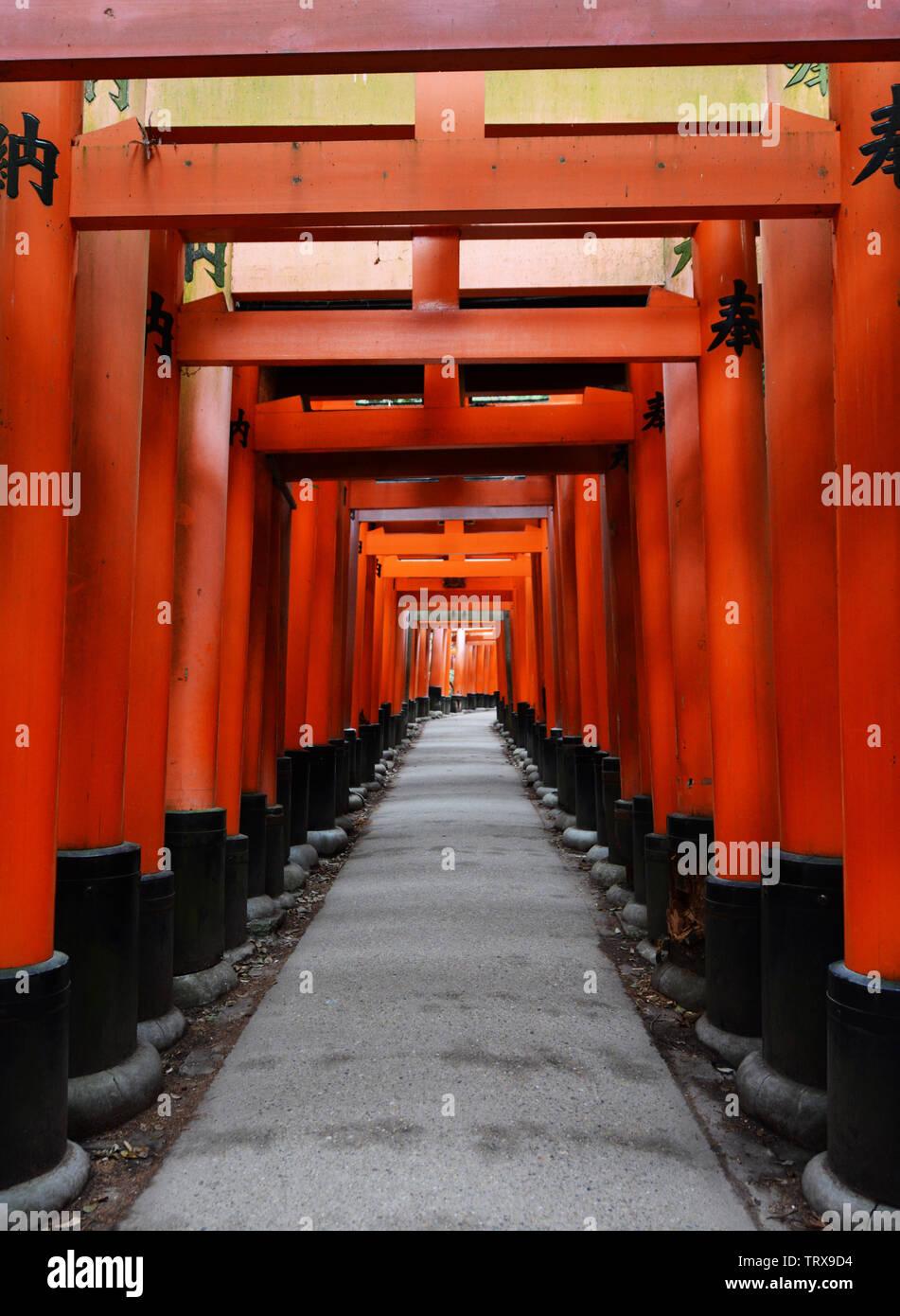 Red Tori Gate at Fushimi Inari Shrine in Kyoto, Japan. Stock Photo