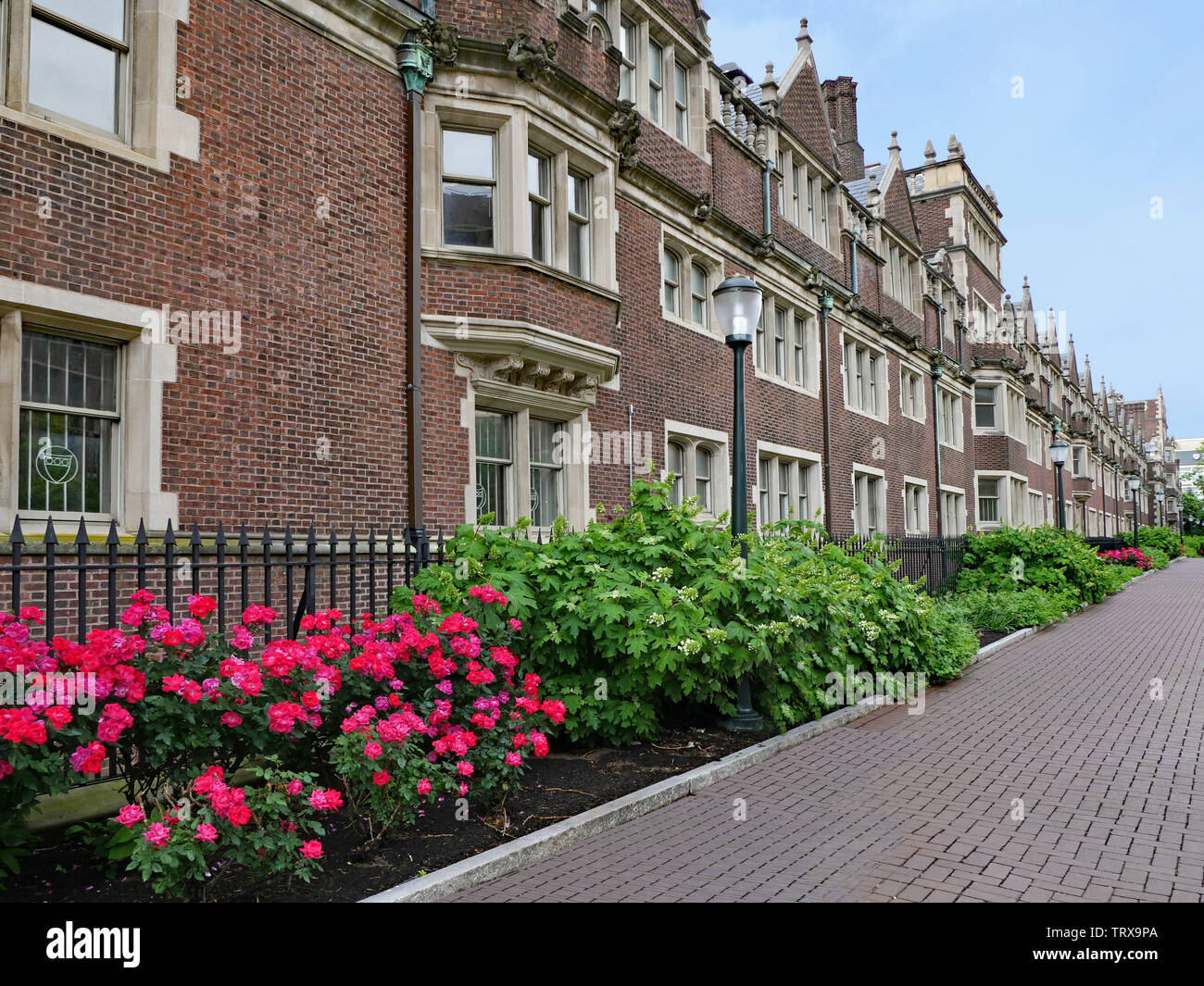 brick student residence building with gothic stylistic elements, such as bay windows and stone frames around windows - Stock Image