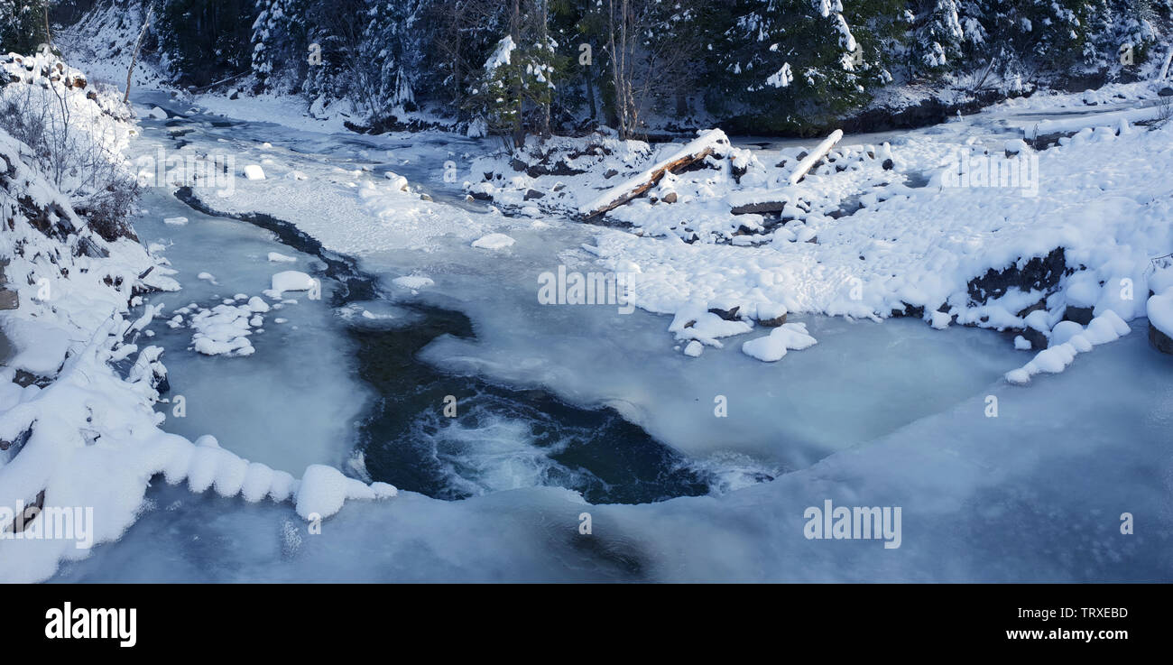 Beautiful winter landscape. Frozen river and green firs covered with snow. - Stock Image