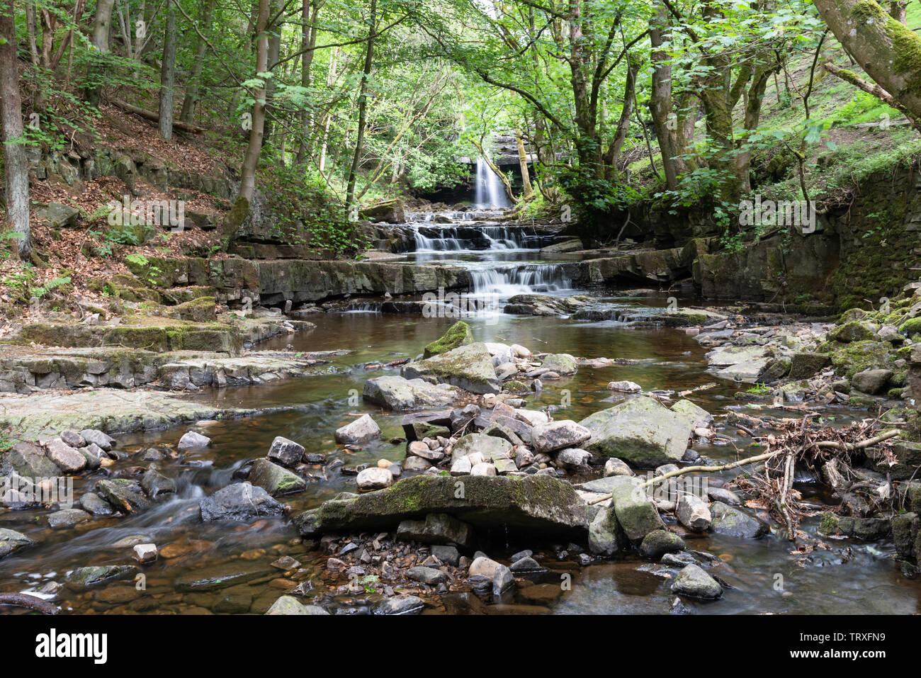 Summerhill Force at Bowlees - Stock Image