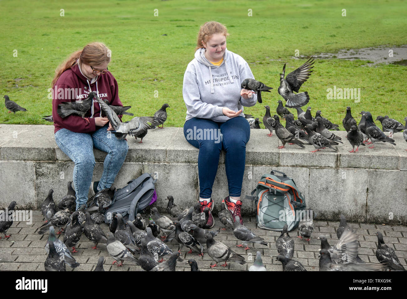 Manchester University students, seated tourists feeding a flock of feral pigeons in Piccadilly gardens, UK - Stock Image
