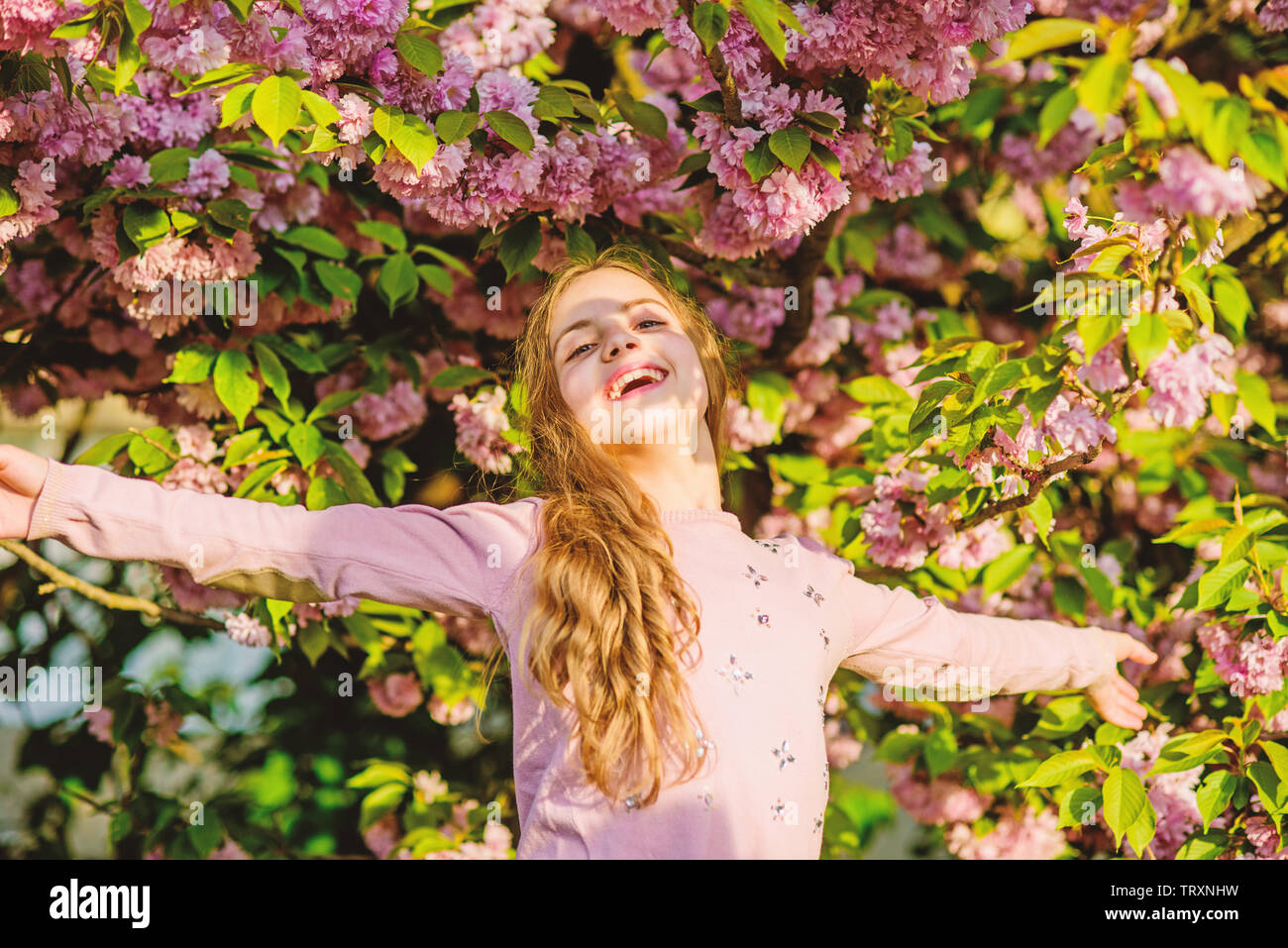Capturing a happy moment. Natural cosmetics for skin. happy girl in cherry flower. Sakura tree blooming. small girl child in spring flower bloom. summer. Childhood beauty. blossom smell, allergy. - Stock Image