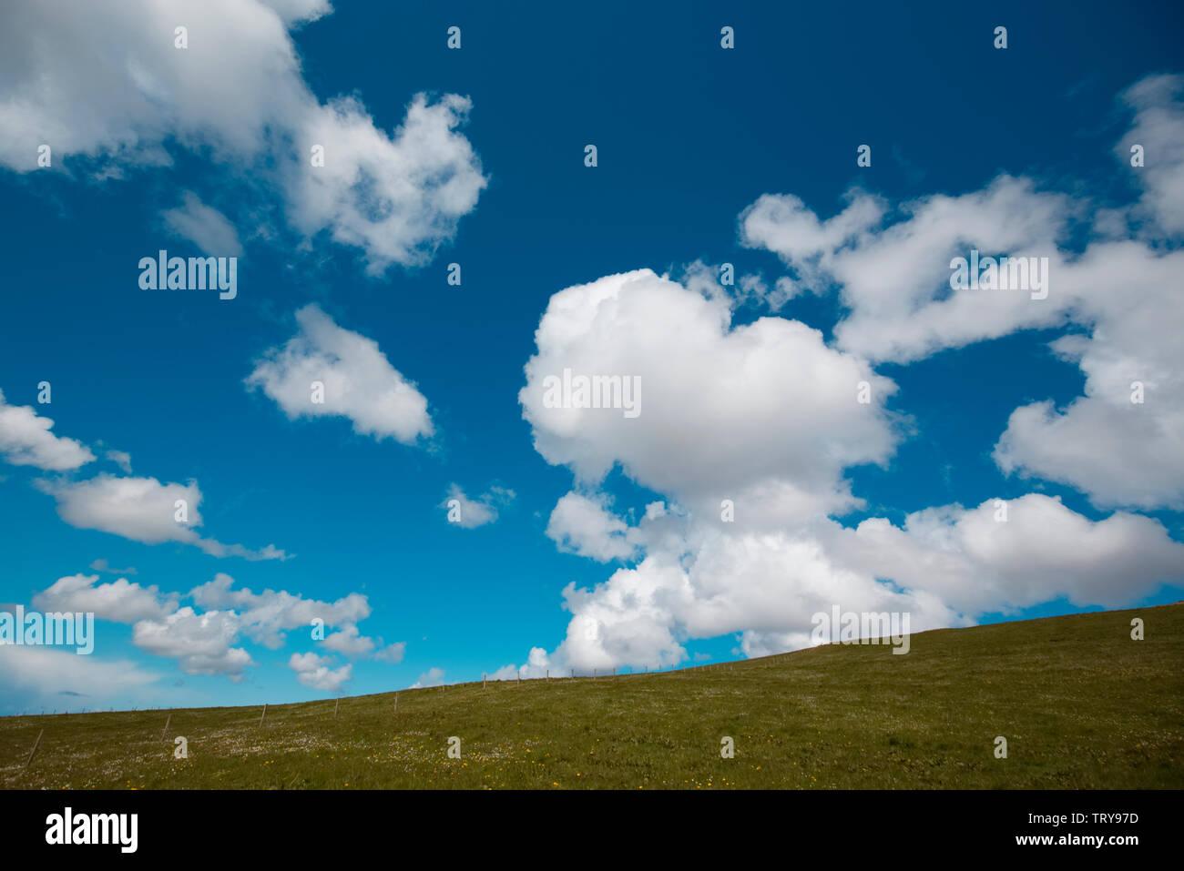Fair weather cumulus cloud - Stock Image