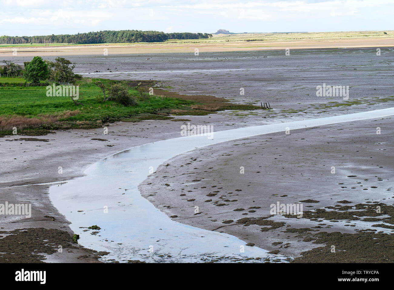 Budle Bay Stock Photos & Budle Bay Stock Images - Alamy