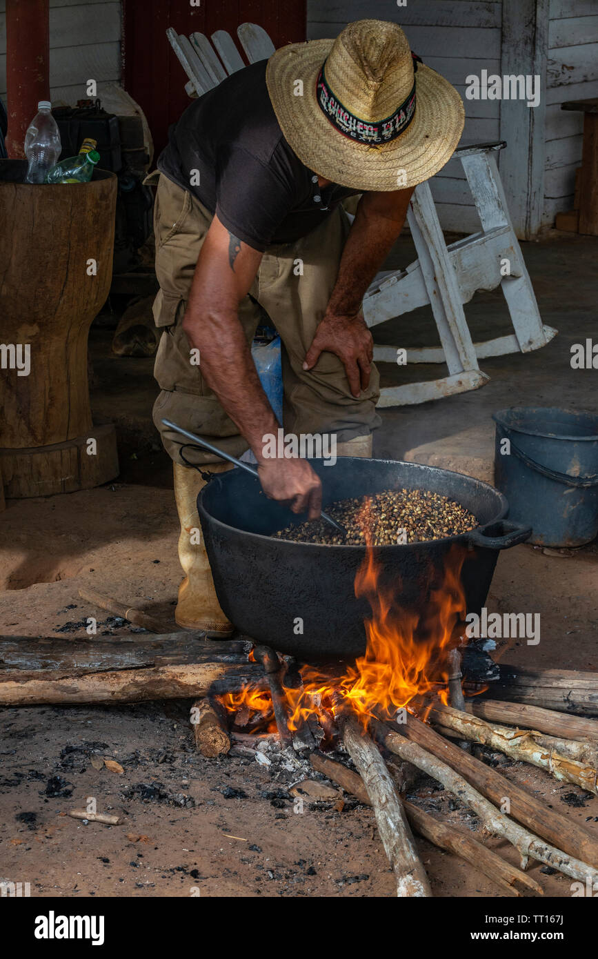 Cuban farmer roasting coffee beans over a wooden fire in the Vinales Valley, Vinales, Pinar del Rio Province,Cuba, Caribbean Stock Photo