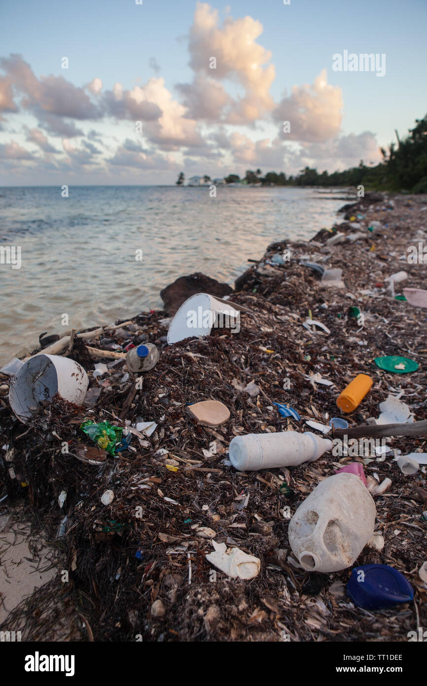 Plastic garbage has washed up on a remote beach in the Caribbean Sea off the coast of Belize. This area is part of the Mesoamerican Barrier Reef. Stock Photo