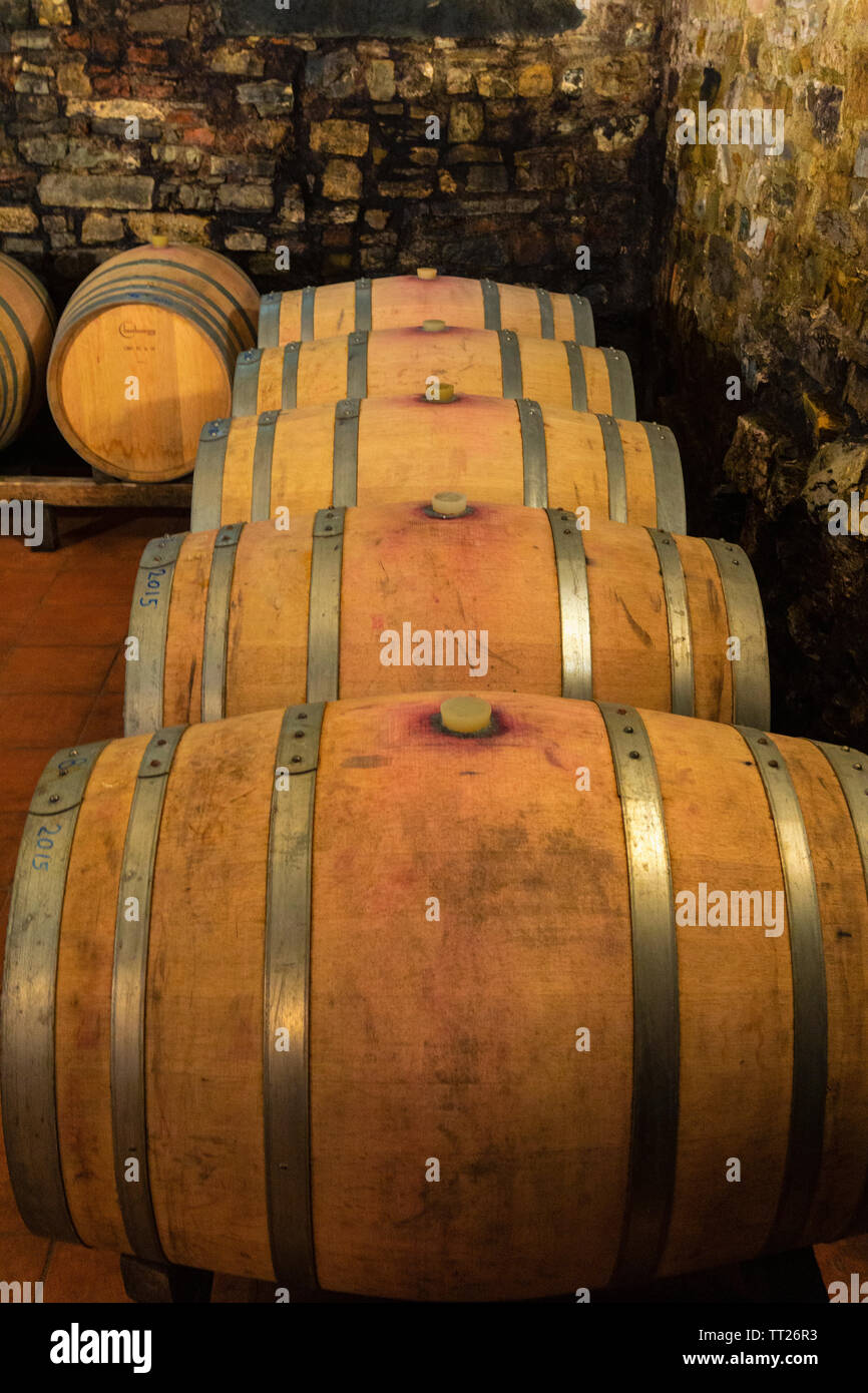 Wine cellar at Fattoria Bagnolo. - Stock Image