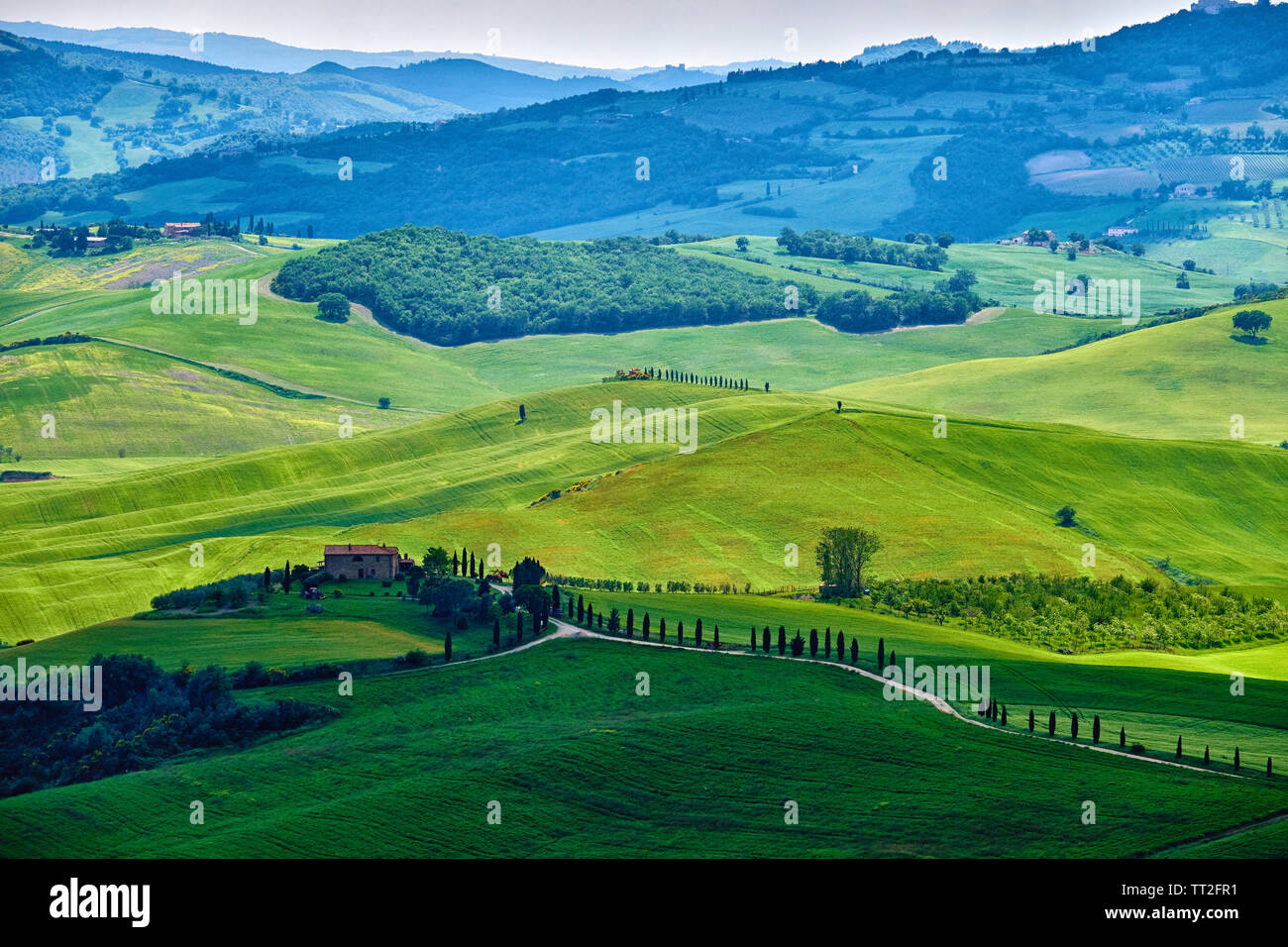 Rolling Hills with Farms, Val d'Orcia, Tuscany, Italy Stock Photo