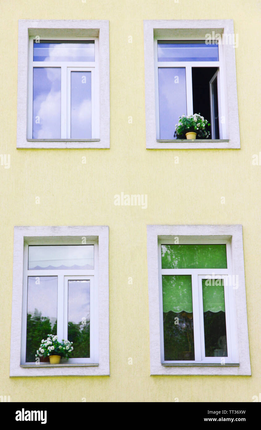 Windows with flowers in pots - Stock Image
