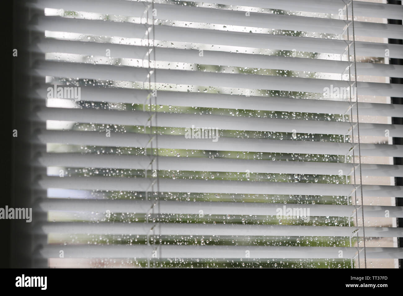 Window with opened blinds background - Stock Image