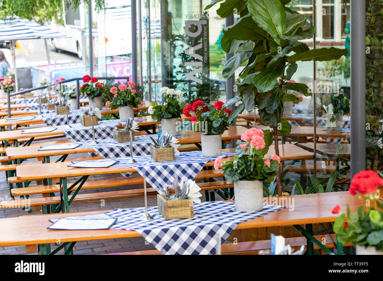 German beer bar in the Rocks Sydney with flowers decorating the outside tables in winter,Sydney,Australia - Stock Image