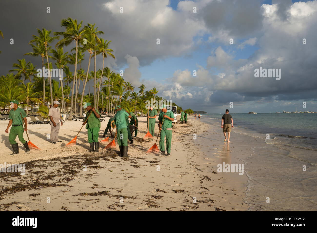 Seaweed Cleaning Stock Photos & Seaweed Cleaning Stock Images - Alamy