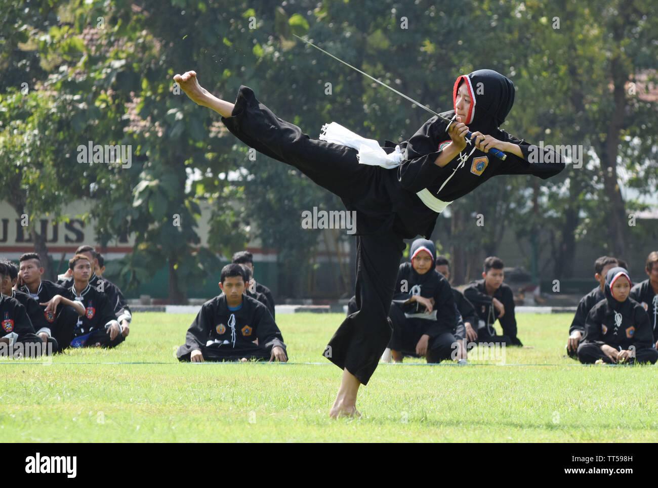 Pesilat memeragakan gerakan silat saat Pengukuhan Beladiri Militer Pencak Silat Nusantara di lapangan upacara Batalyon Para Raider 501/Bajra Yudha Mad - Stock Image