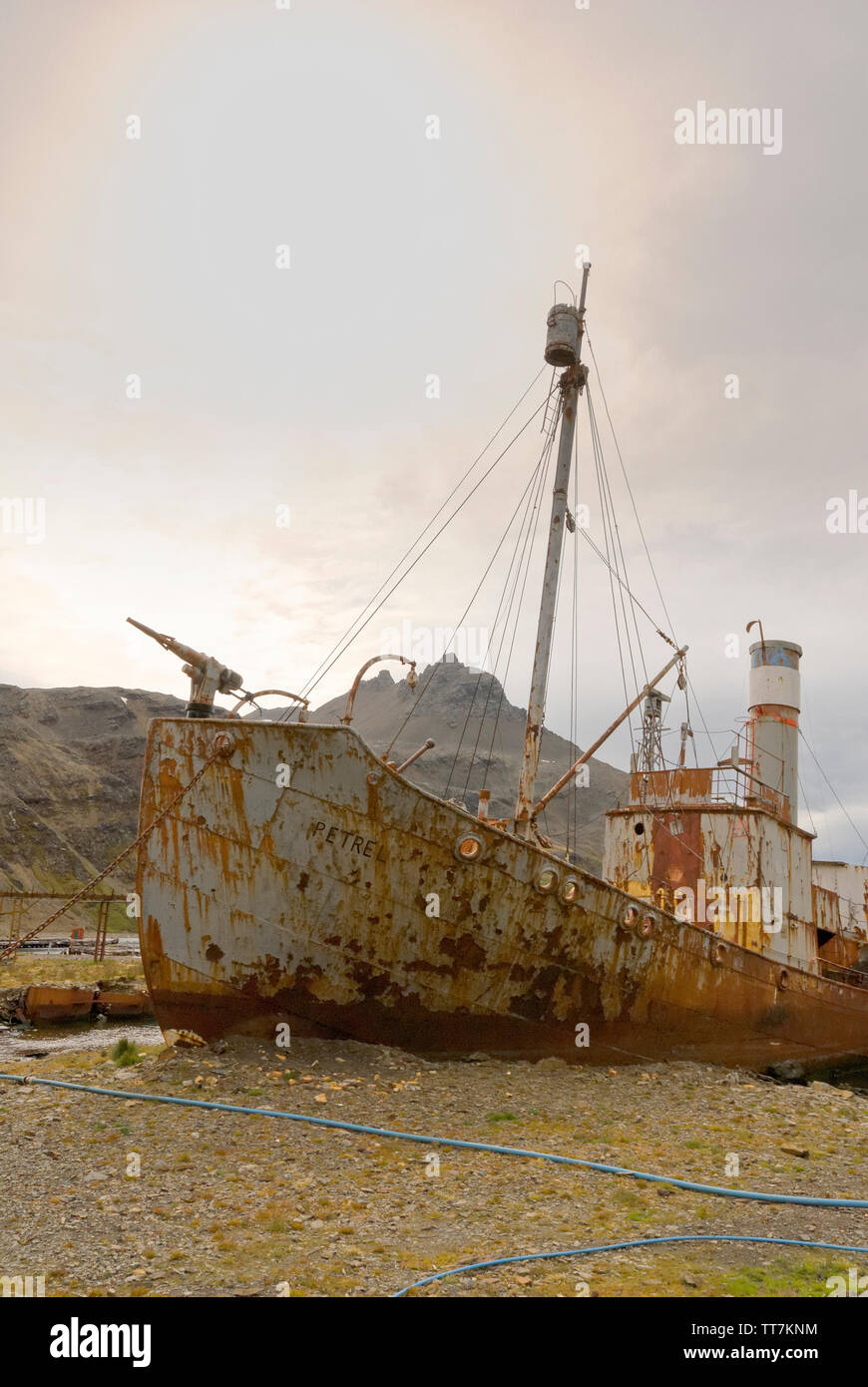 Remains of the old whaleing station at Grytviken, South Georgia, Antartica - Stock Image