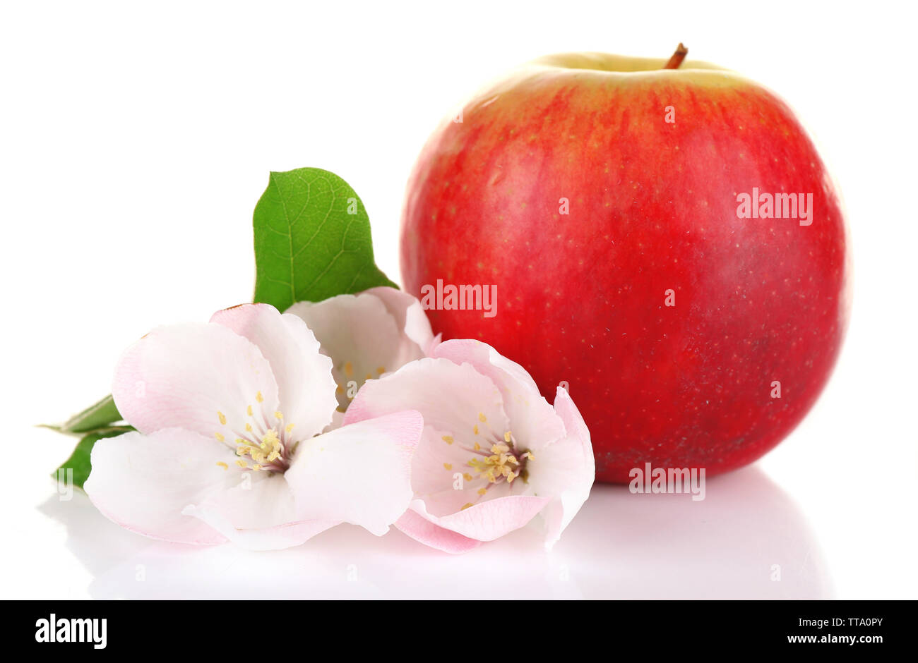 Fresh apple with apple blossom, isolated on white Stock Photo